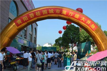 青阳碧桂园活动图