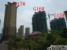 高速铜都天地G15#—G17#项目进度(2017.8.11)