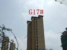 高速铜都天地G17#楼栋进度(2017.8.11)