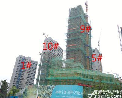 融创城1#5#9#10#楼工程进度(2017.08.12)