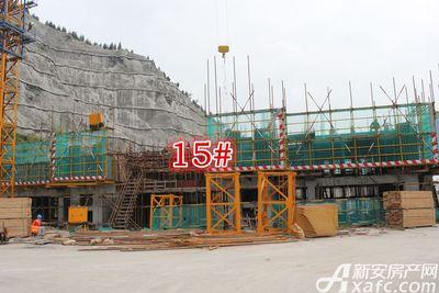 淮北凤凰城15#八月进度20170814