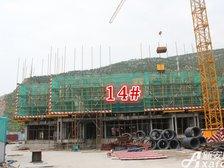 淮北凤凰城14#进度图20170814