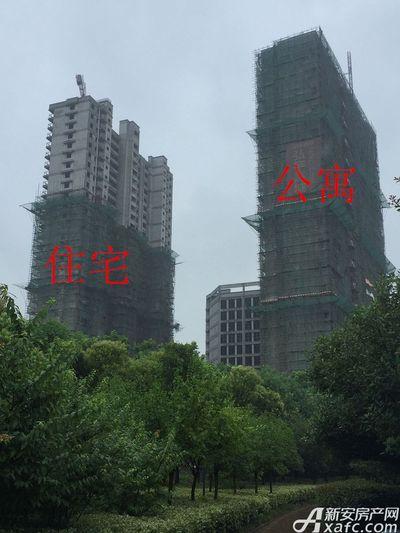 铜化弘宇嘉城住宅、公寓、写字楼8月进度(2017.8.14)