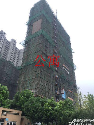 铜化弘宇嘉城公寓8月进度(2017.8.14)