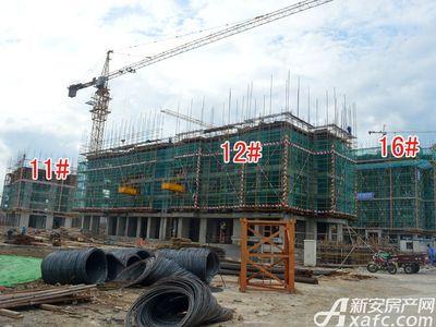 宜秀蓝湾11#、12#、16#工程进度(2017.8.17)