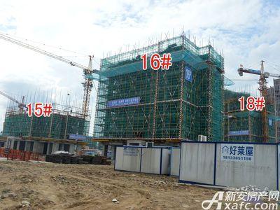 宜秀蓝湾15#、16#、18#工程进度(2017.8.17)