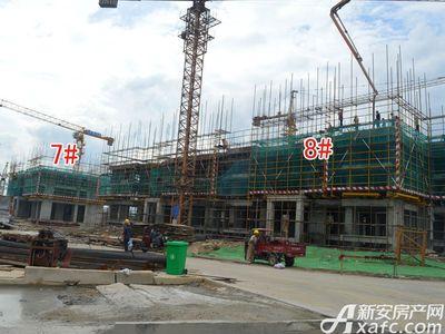 宜秀蓝湾7#8#工程进度(2017.8.17)