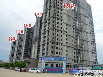 北城秀里8#、12#、15#、17#、19#工程进度(2017.8.17)