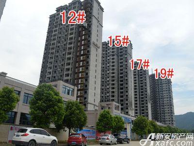 北城秀里12#、15#、17#、19#楼工程进度(2017.8.17)