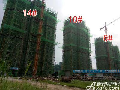 大地凤凰城6#、10#、14#工程进度(2017.8.17)