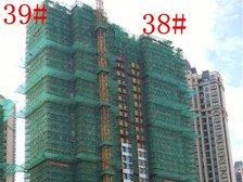 恒大绿洲38#、39#楼项目进度(2017.8.15)