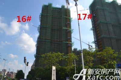 秀山信达城16#工程进度(2017.8.14)