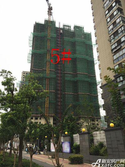 华源七星城5#楼8月进度(2017.8.28)
