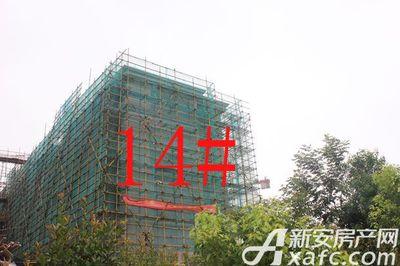 宇业天逸华府14#工程进度(2017.8.29)