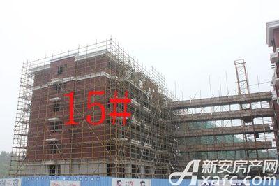 宇业天逸华府15#工程进度(2017.8.29)