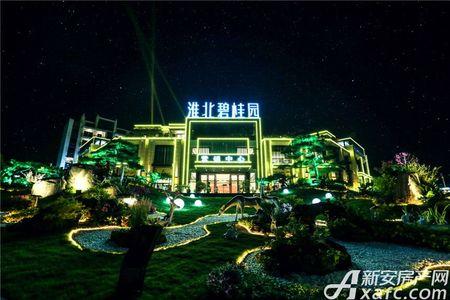 淮北碧桂园实景图