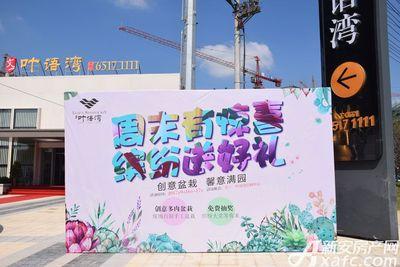 文一叶语湾创意盆栽DIY(2017.9.16)