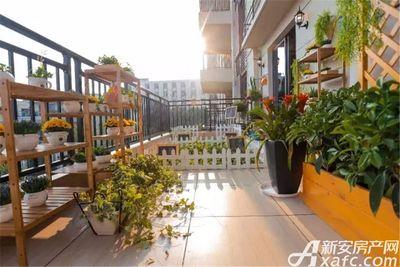 淮北碧桂园260㎡样板间-阳台