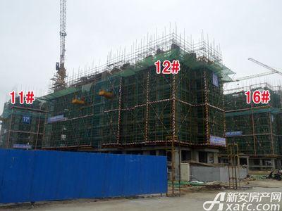 宜秀蓝湾11#、12#、16#工程进度(2017.9.6)