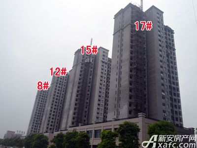 北城秀里8#、12#、15#、17#工程进度(2017.9.6)