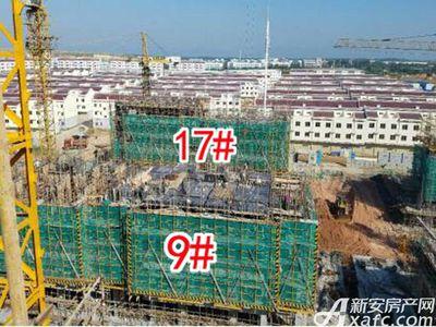 怀宁碧桂园9#17#号楼在建2017.9.22