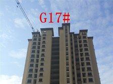高速铜都天地G17#楼栋进度(2017.9.22)