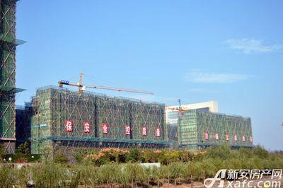 万成·哈佛玫瑰园二期洋房工程进度(2017.10)