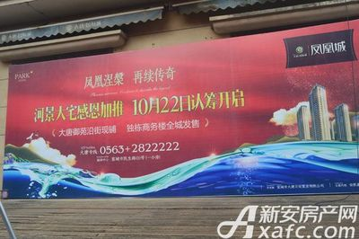 大唐凤凰城三期认筹火爆开启(2017年9月22)