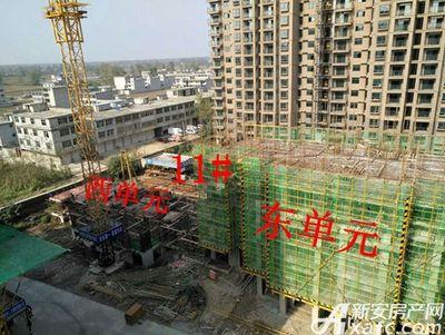 金桂山庄涡阳金桂山庄10月份项目进度 11#东单元建至六层左右、西单元建至一层