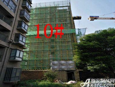 金桂山庄涡阳金桂山庄10月份项目进度 10#已经封顶