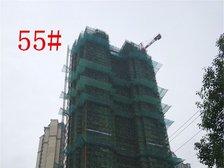 恒大绿洲55#楼项目进度(2017.10.23)