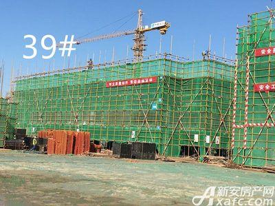 鸿坤理想城10月工程进度