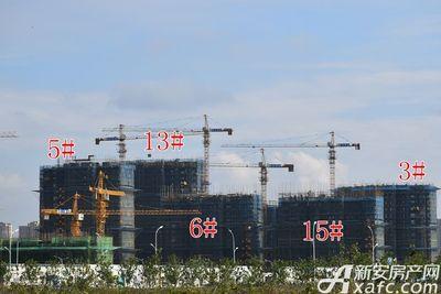 皖新翡翠庄园在建高层10月工程进度(2017.10.31)