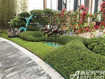 恒大滨江左岸园林实景图(2017.11.2)