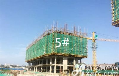 金鹏玲珑湾东院金鹏玲珑湾11月工程进度