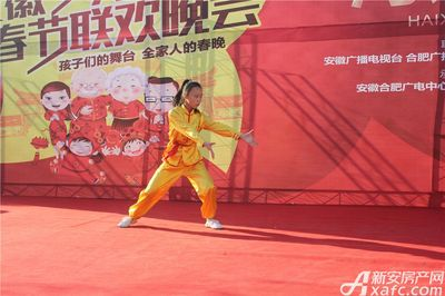公园道B区御湖安徽少儿电视春晚海选赛第一场(2017.11.05)