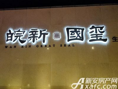 皖新国玺实景图