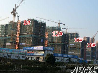 宜秀蓝湾8#、12#、16#、18#工程进度(2017.11.15)