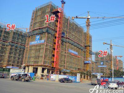 宜秀蓝湾1#、2#、5#工程进度(2017.11.15)