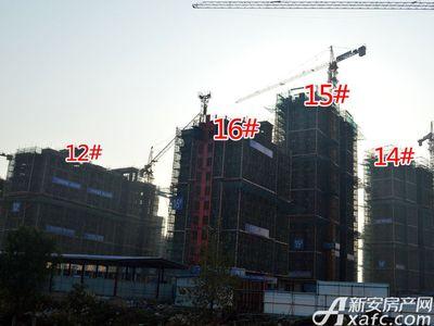 宜秀蓝湾12#、14#、15#、16#工程进度(2017.11.15)