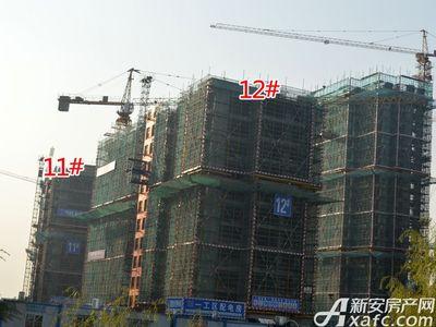 宜秀蓝湾11#、12#工程进度(2017.11.15)
