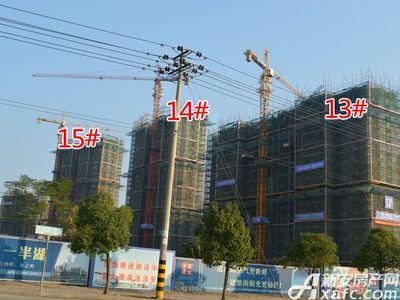 宜秀蓝湾13#、14#、15#工程进度(2017.11.15)