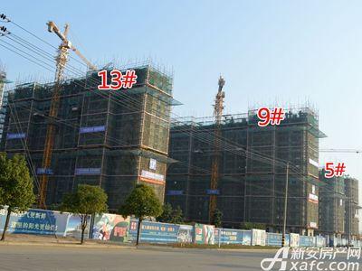 宜秀蓝湾5#、9#、13#工程进度(2017.11.15)