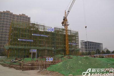 乐泽鑫城乐泽鑫城11月项目进度(11.17)