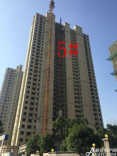 华源七星城5#楼11月进度(2017.11.23)