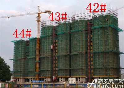 恒大绿洲42#—44#楼项目进度(2017.11.23)
