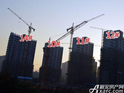 大地凤凰城10#、11#、12#、14#工程进度(2017.11.15)
