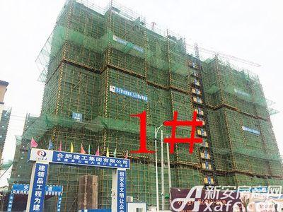 恒大滨江左岸请问下现在新房后台集体上传图怎么的时候  都会有问题上传不了的问题