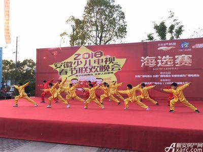 公园道B区御湖安徽少儿电视春晚海选赛第二场、第三场(2017.11.26)