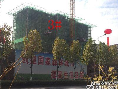 滨江壹号院3#楼11月进度(2017.11.25)
